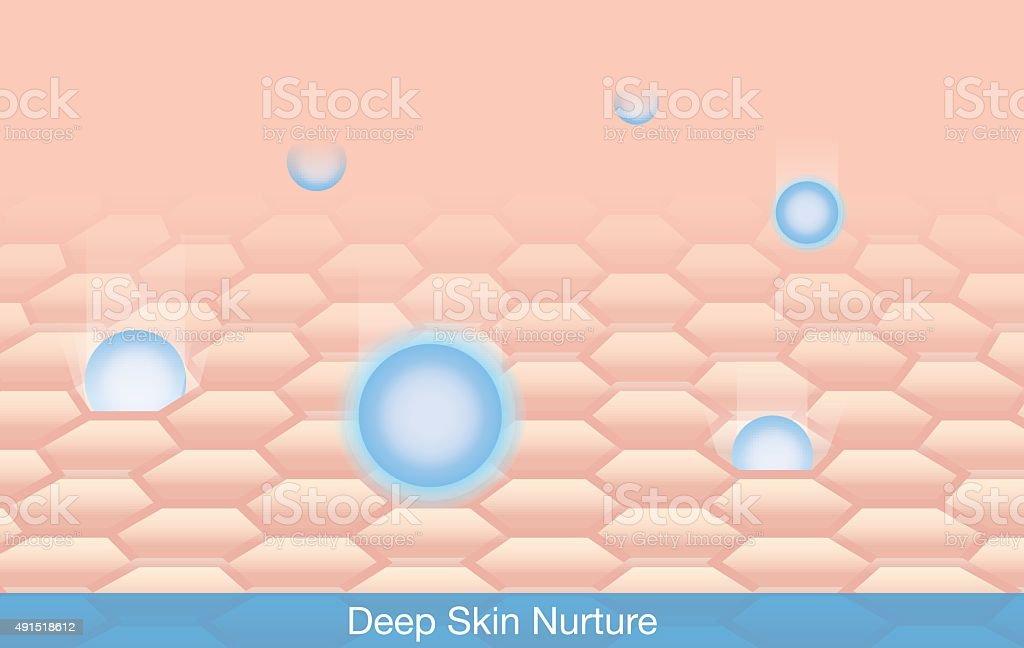 Deep Skin Nurture vector art illustration
