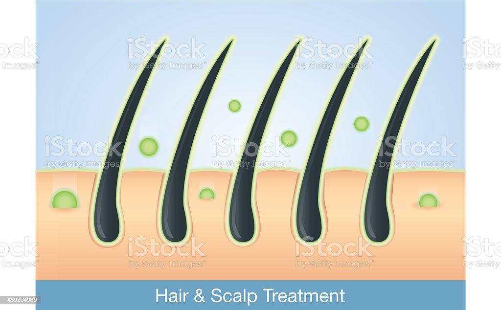 Deep treatment into hair and scalp. vector art illustration