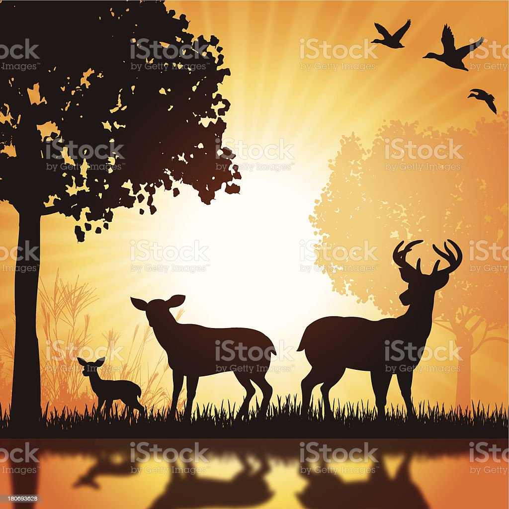 Deer Family - Buck, Doe, Fawn Silhouette Background vector art illustration