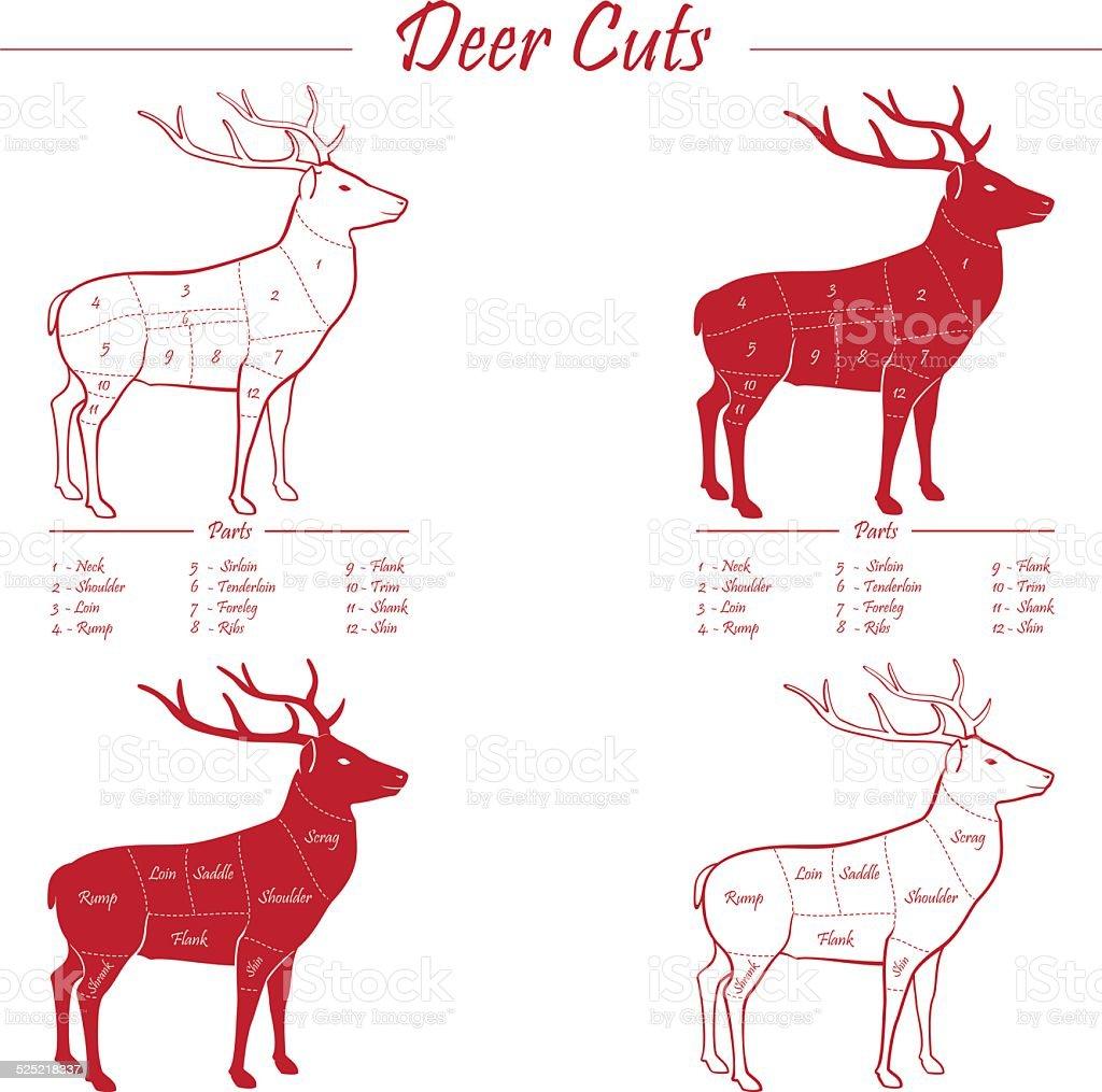 Deer meat cut scheme vector art illustration