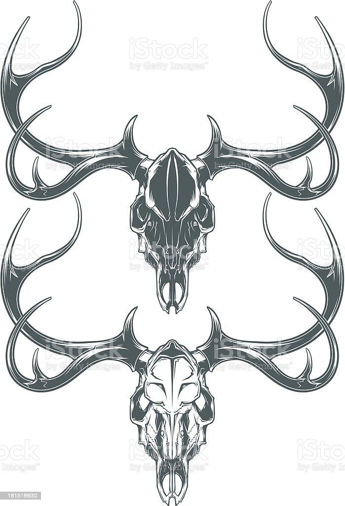 deer skulls vector art illustration