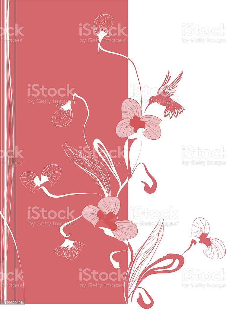 delicate flowers and colibri royalty-free stock vector art