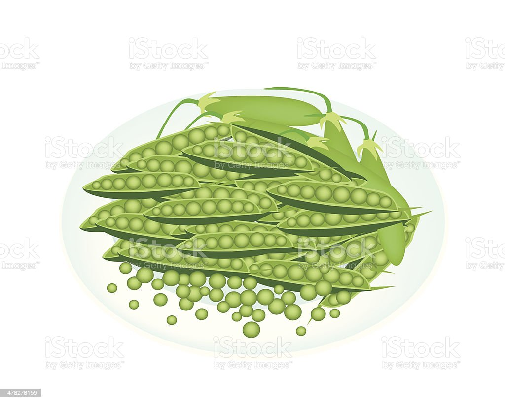 Delicious Sweet Green Pea in White Plate vector art illustration