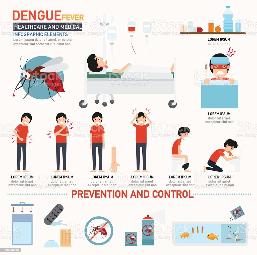 Dengue fever infographics vector art illustration