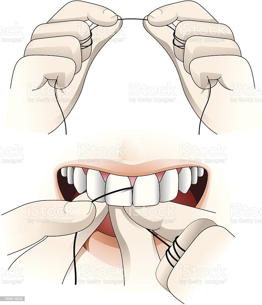 Dental floss vector art illustration