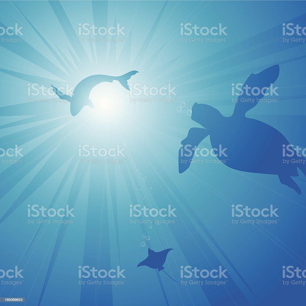 depth sea royalty-free stock vector art