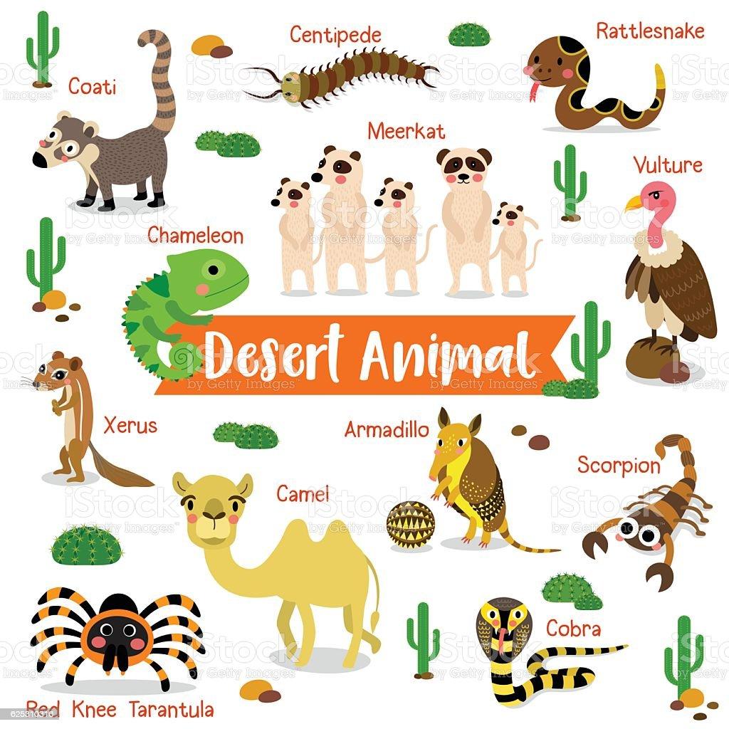 Desert Animal on white background with animal name vector illustration. vector art illustration