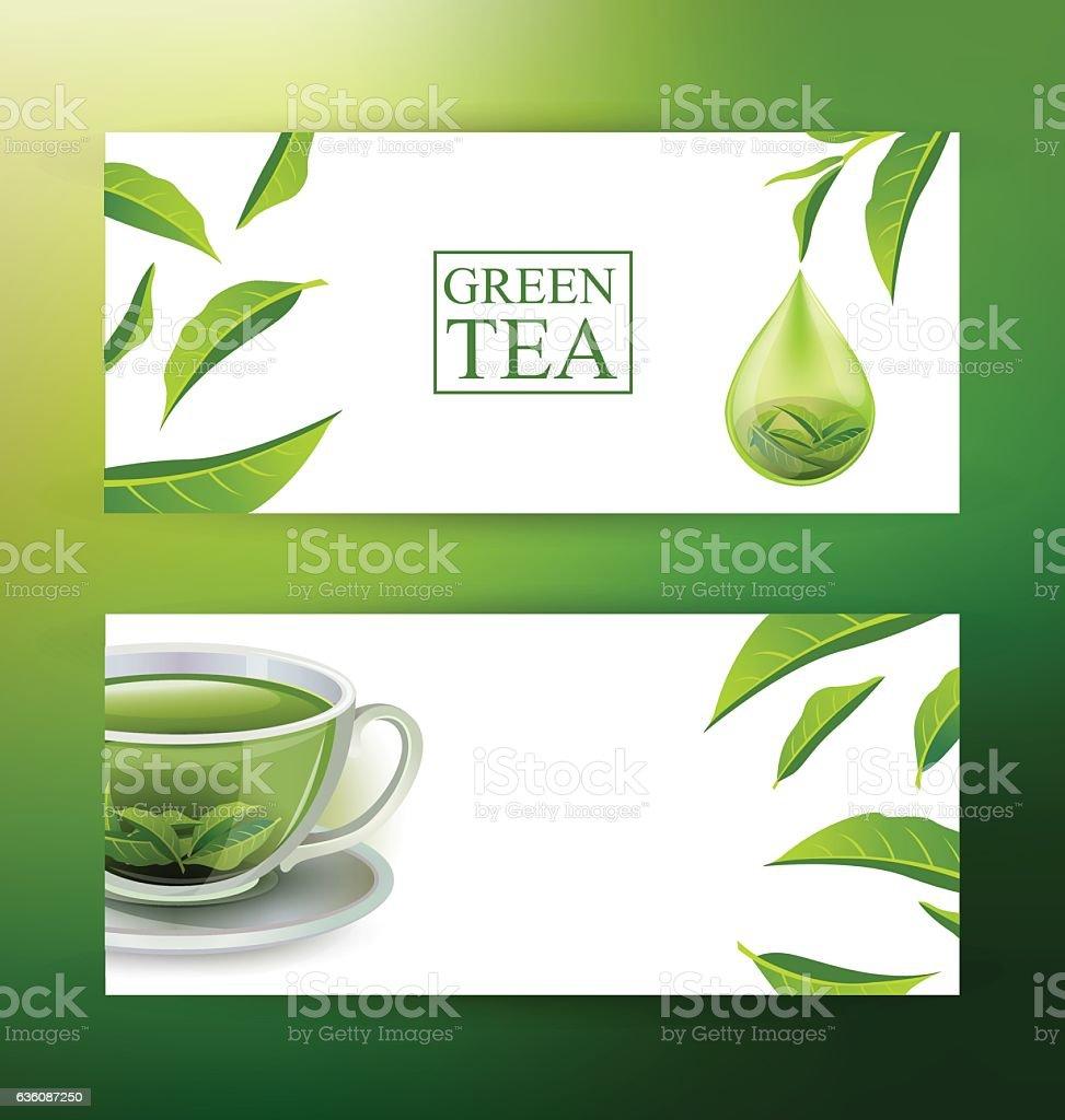 Design banner template - Design Banner Template Green Tea Vector Illustration Royalty Free Stock Vector Art