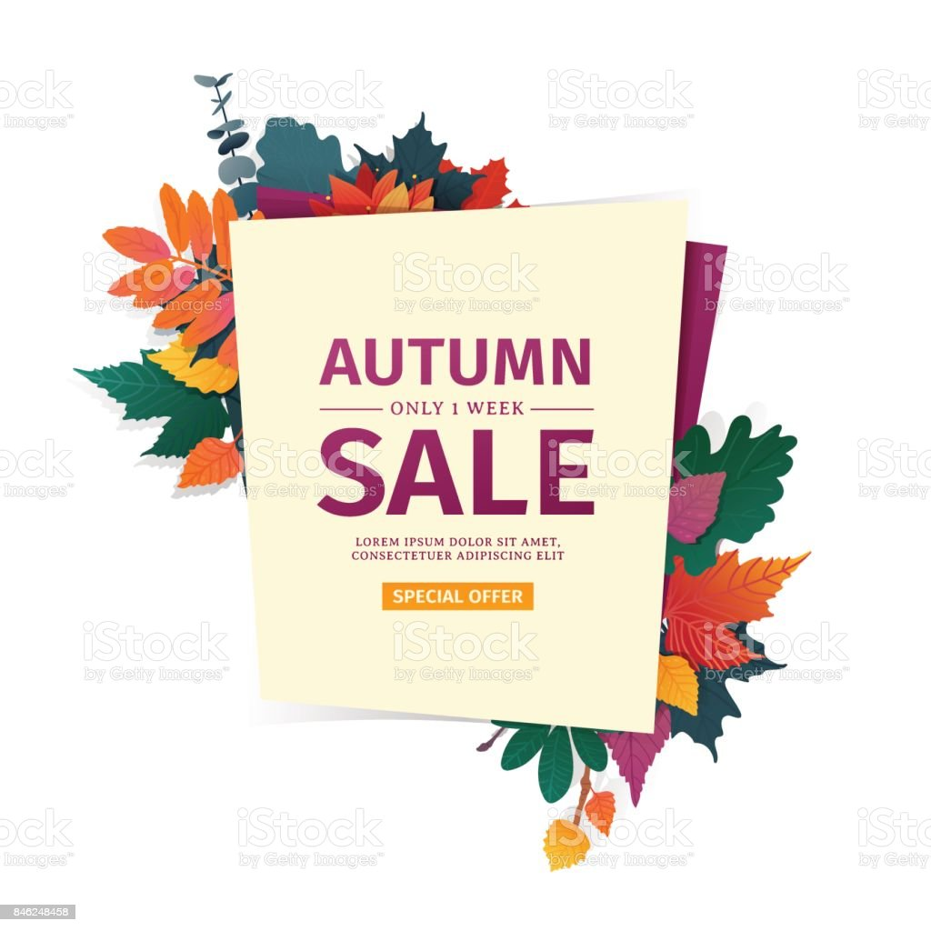 Design banner with autumn sale icon. Discount card for fall season with white frame and herb. Promotion offer with autumnal  oak plant, maple leave and flowers decoration. Vector vector art illustration