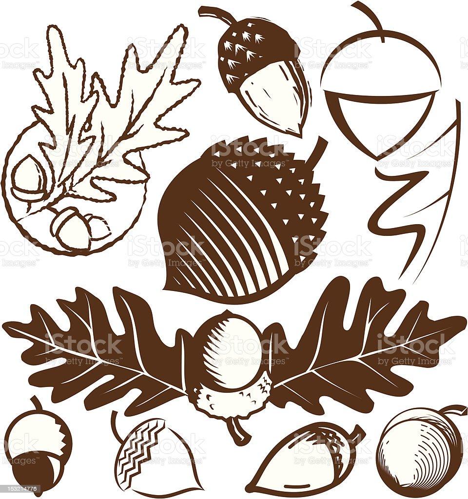 Design Elements - Acorns vector art illustration
