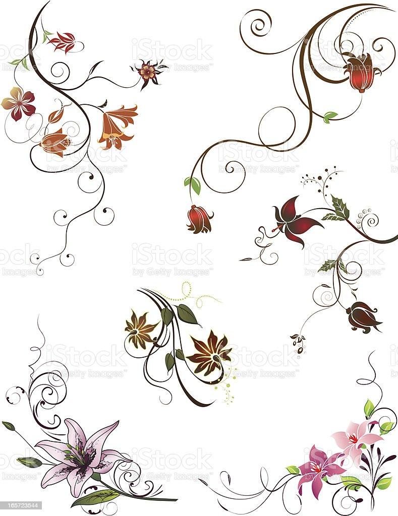 Design Elements - Florals royalty-free stock vector art