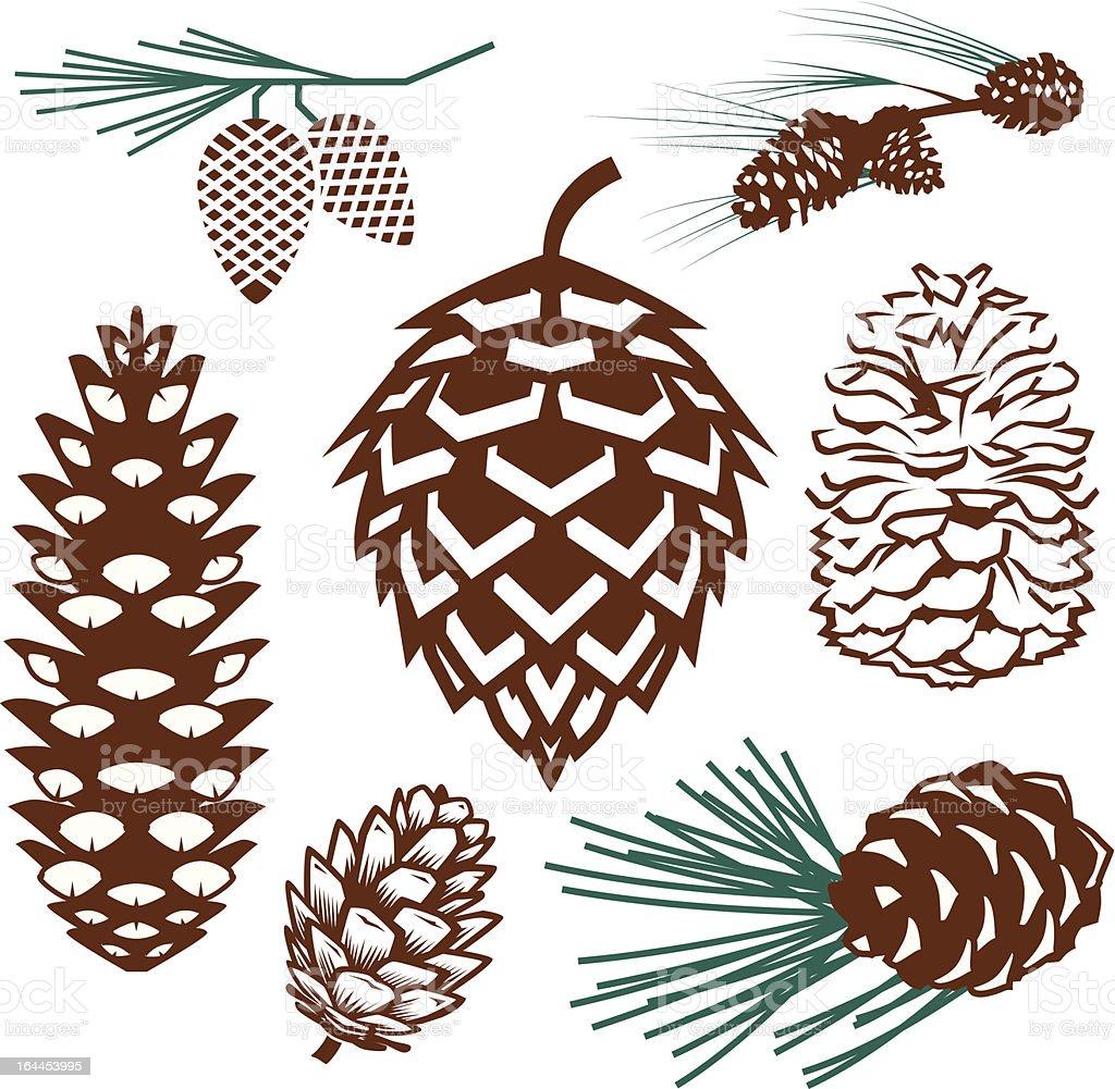 Design Elements - Pinecones vector art illustration