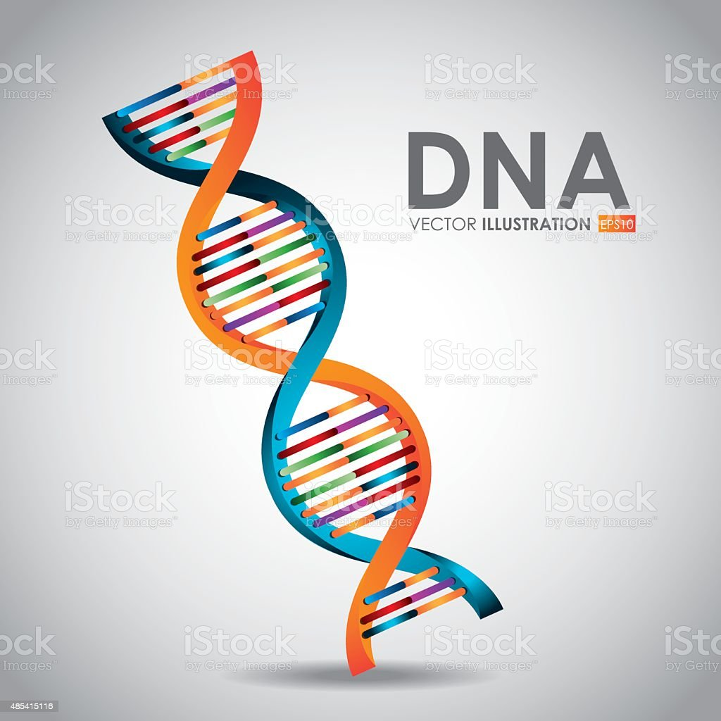 DNA design, vector illustration. vector art illustration