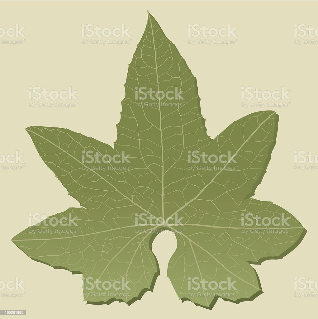 Detail of Leaf royalty-free stock vector art