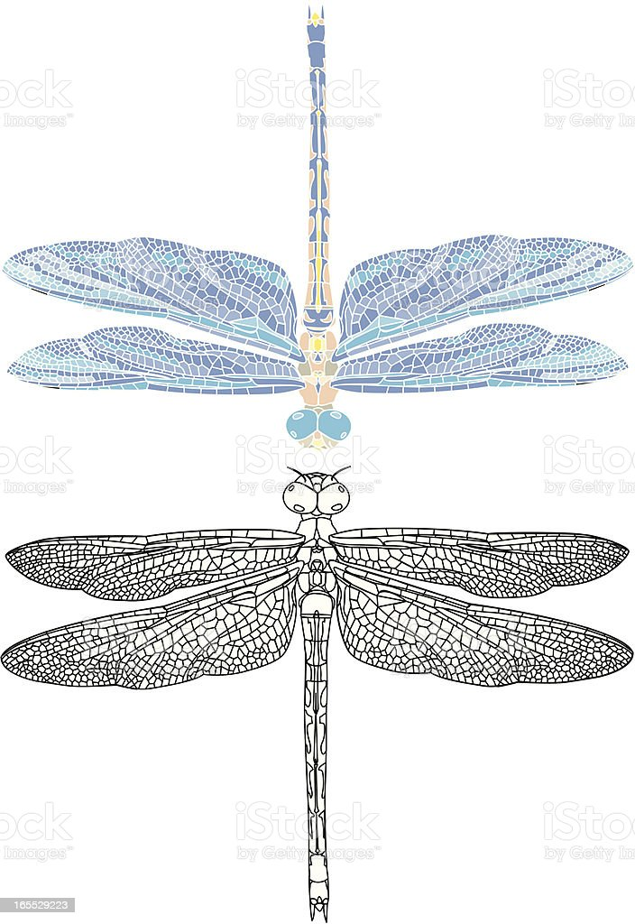 detailed dragonfly illustation outline and mosaic style vector art illustration