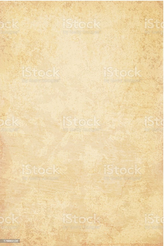 Detailed Grunge Vector Paper vector art illustration