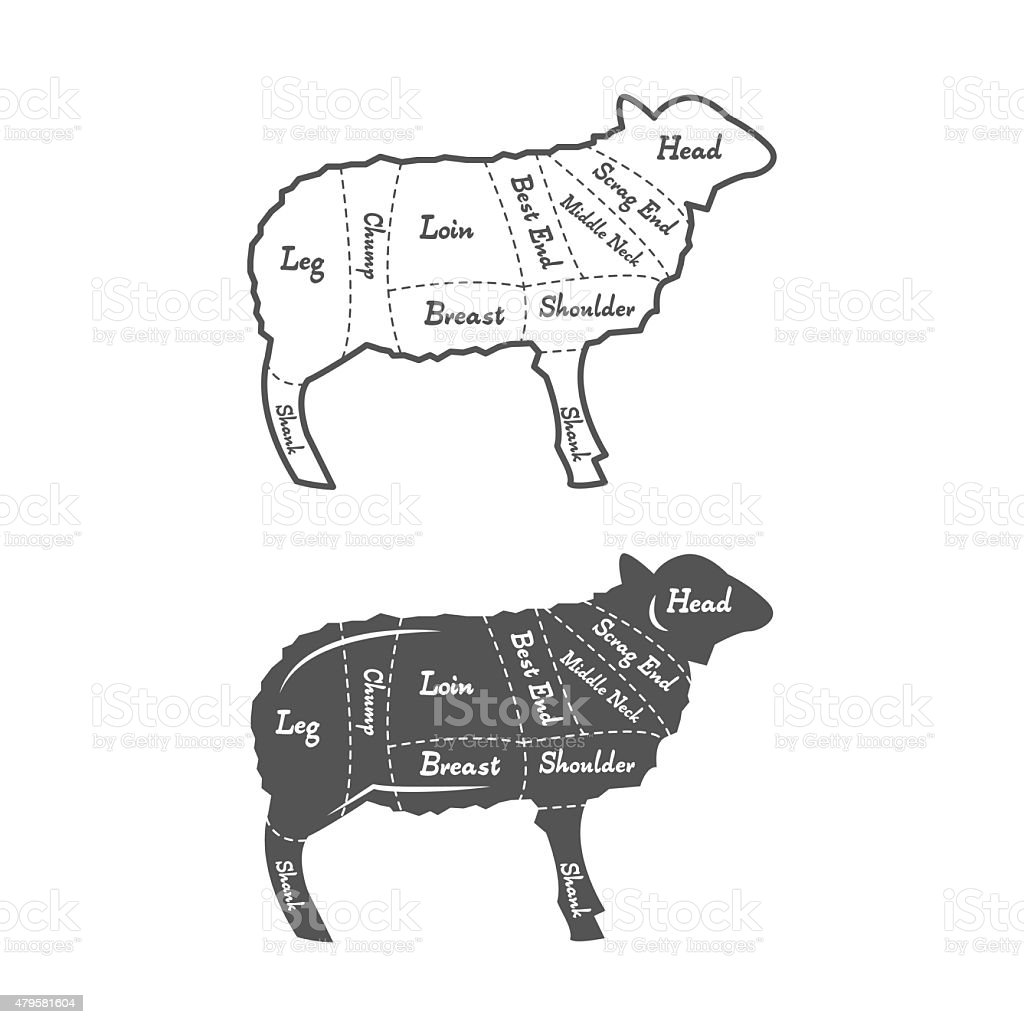 Detailed illustration, diagram, scheme or chart English Cut of lamb vector art illustration