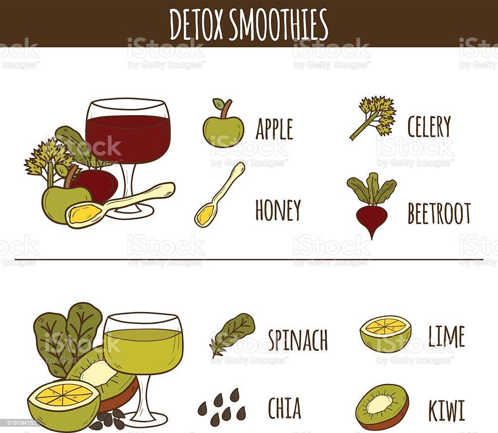 Detox smoothies recipes vector art illustration