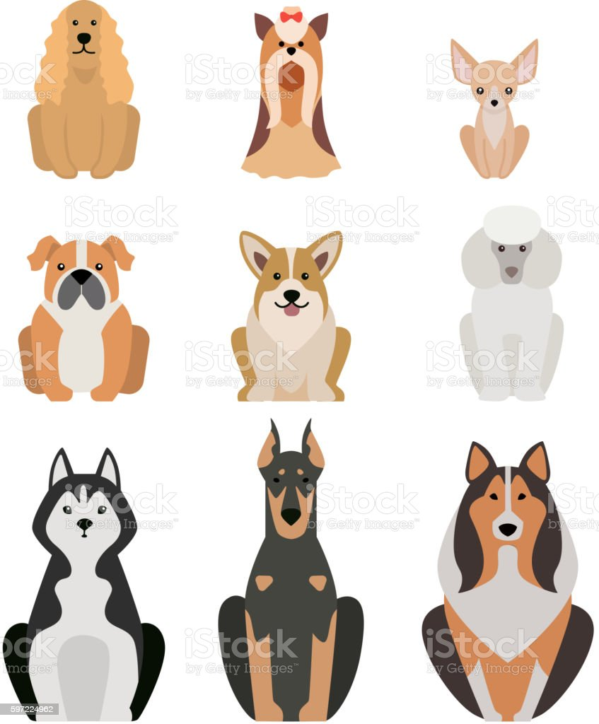 Different dogs breed isolated on white vector art illustration