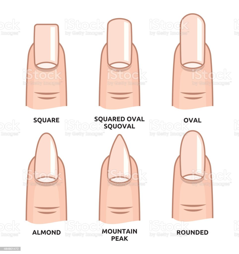 Different nail shapes - Fingernails fashion Trends vector art illustration