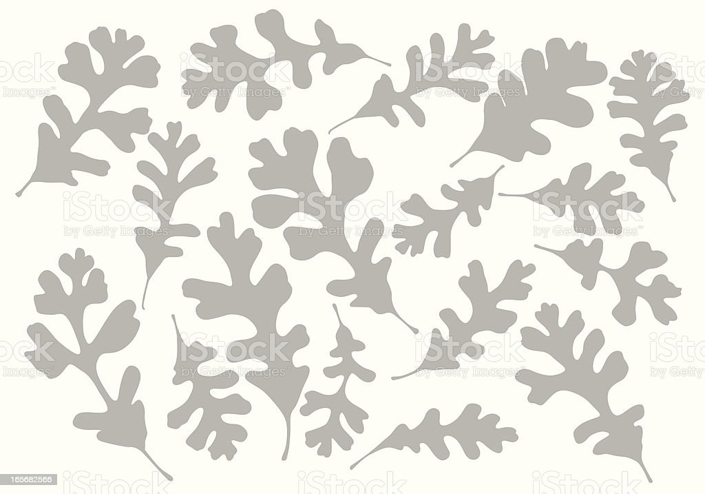 Different Oak Leaves Background Vector Silhouette royalty-free stock vector art