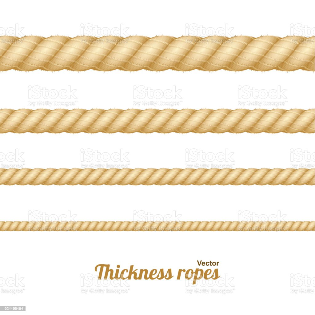 Different Thickness Rope Set. Vector vector art illustration
