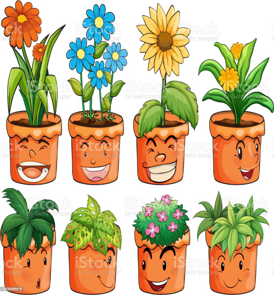 Different types of plant in clay pots vector art illustration