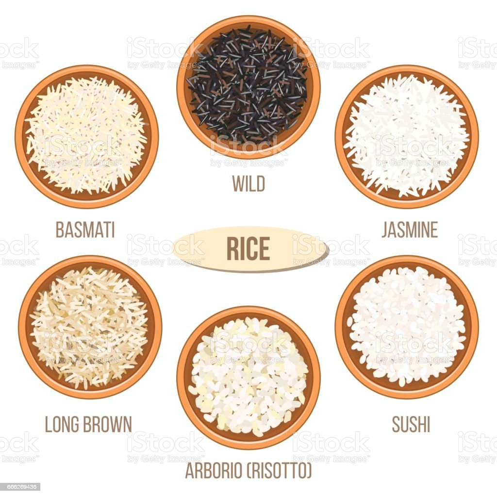 Different types of rice in bowls. Basmati, wild, jasmine, long brown, arborio, sushi vector art illustration