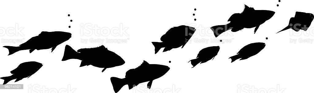 Different types of swimming fish vector art illustration