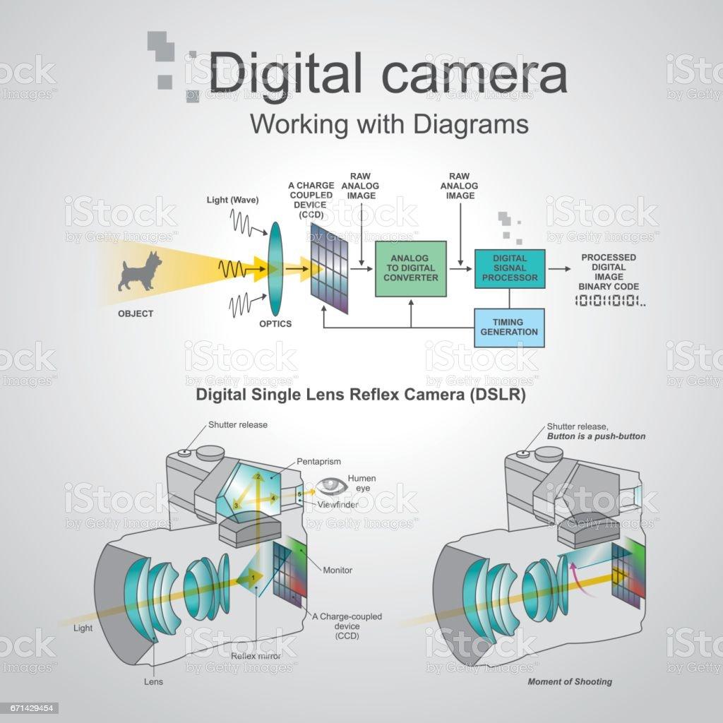 Digital camera dslr. Vector graphic. vector art illustration