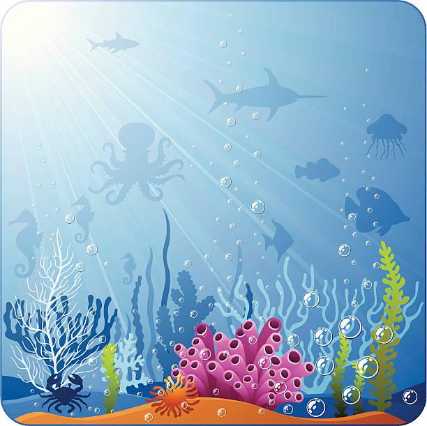 ocean floor clipart - photo #39
