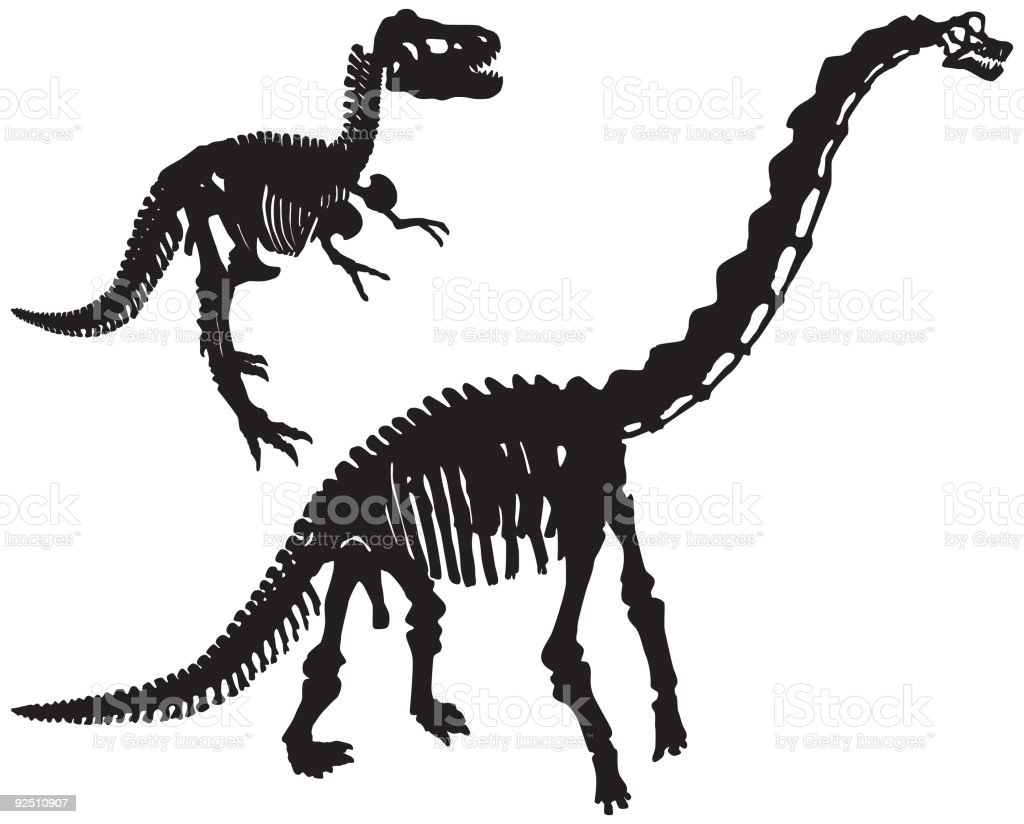 Dinosaur Bones (Vector) royalty-free stock vector art