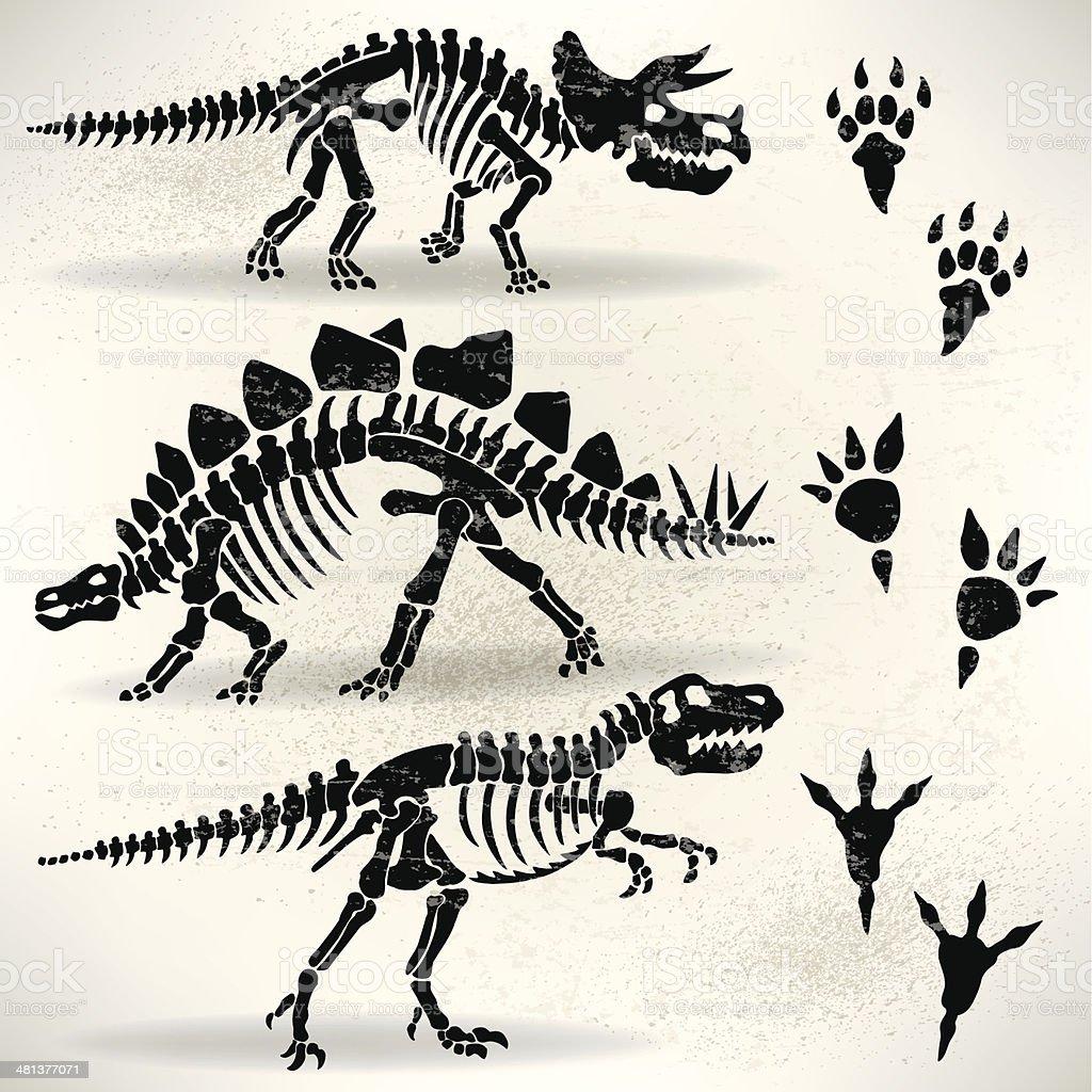 Dinosaur Foot Prints, Tyrannosaurus Rex, Stegosaurus,Triceratops vector art illustration