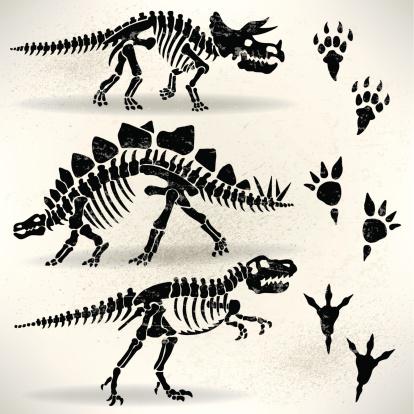 dinosaur clip art, vector images  illustrations - istock