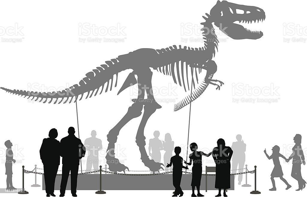 Dinosaur museum vector art illustration