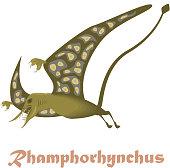 Dinosaur Rhamphorhynchus illustration.