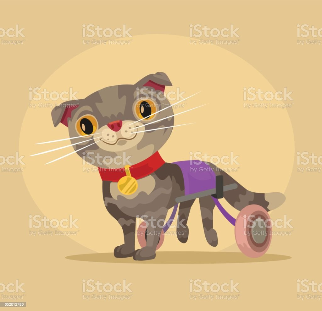 Disabled cat character in wheelchair vector art illustration