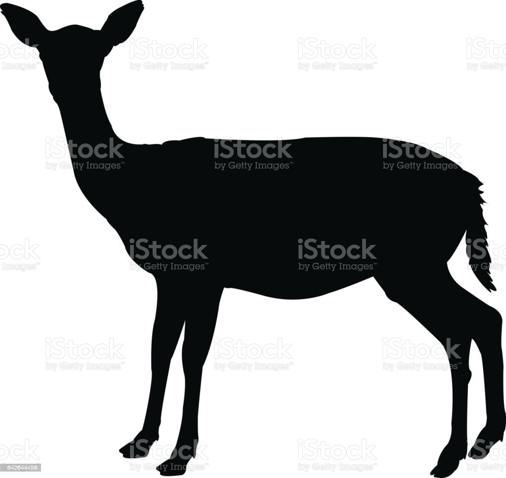 Doe silhouette vector art illustration