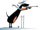 Dog a biathlon competitor