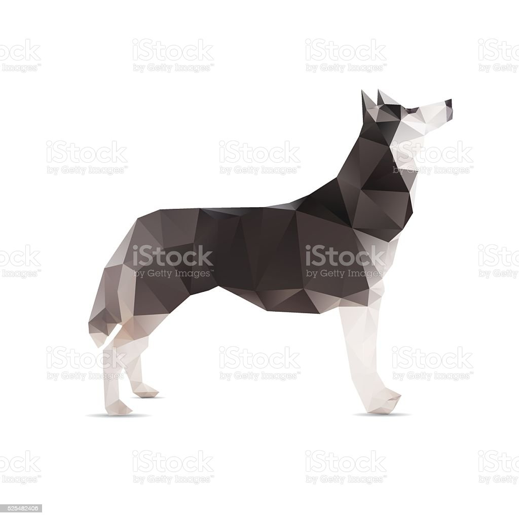 Dog abstract isolated on a white backgrounds. vector art illustration