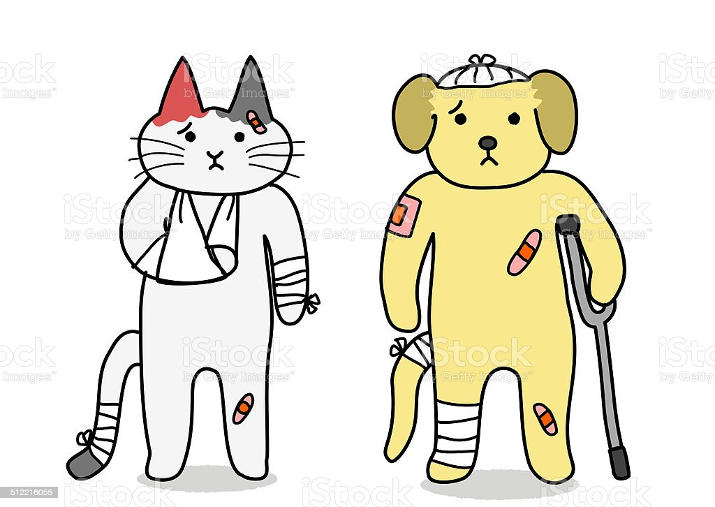 dog and cat,injury vector art illustration