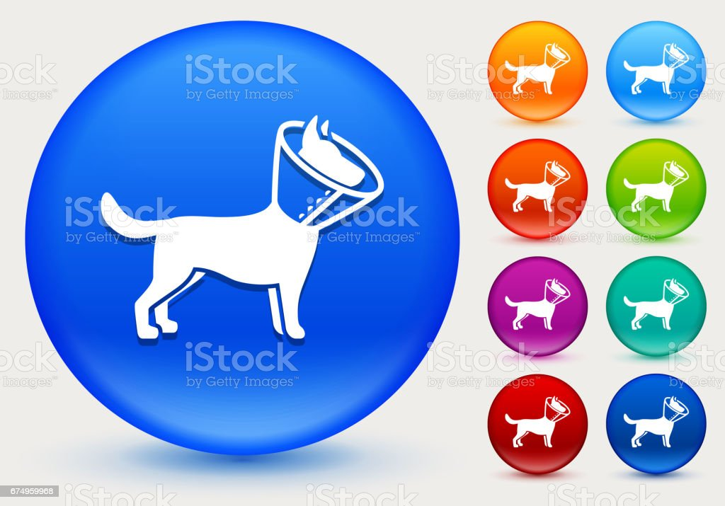 Dog and Neck Cone Icon on Shiny Color Circle Buttons vector art illustration