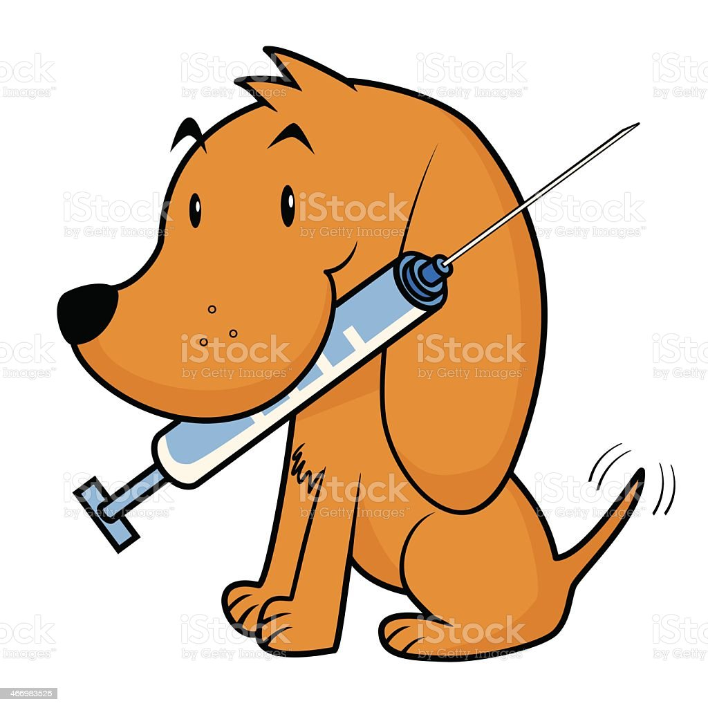 Dog and vaccine vector art illustration