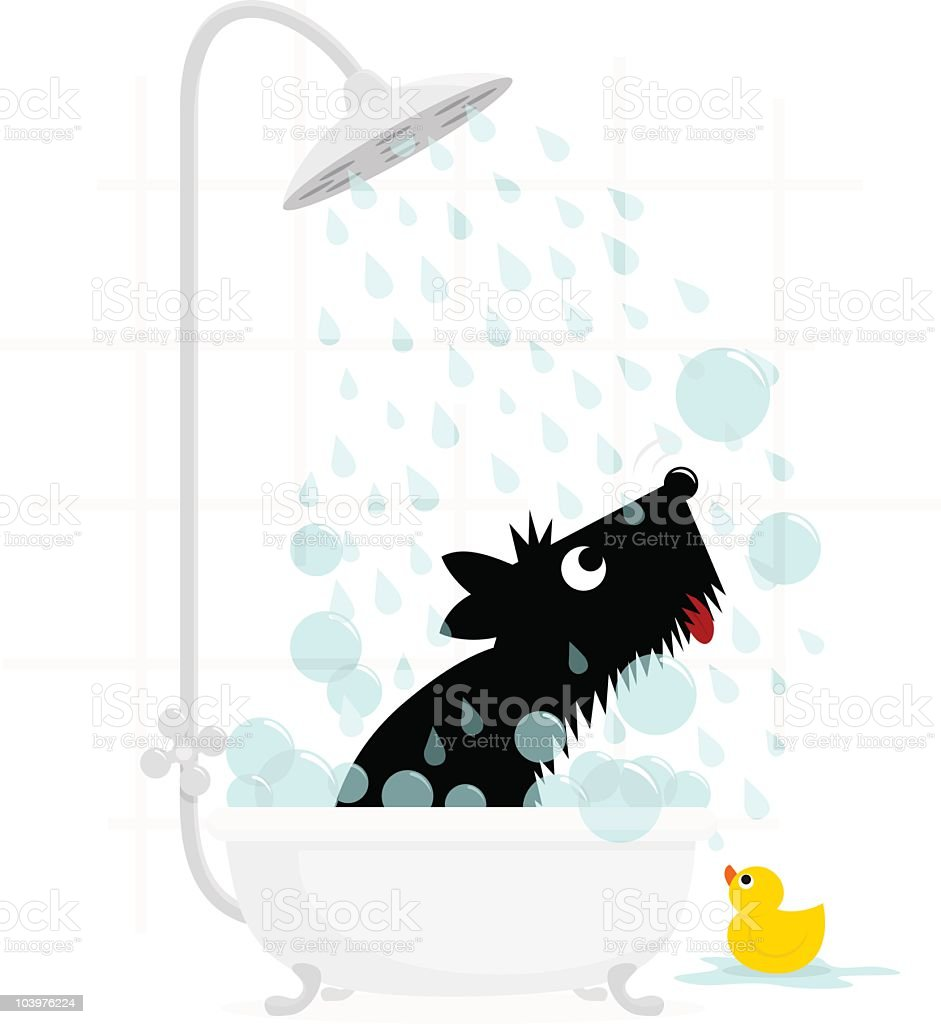 Dog bath terrier cute illustration vector vector art illustration