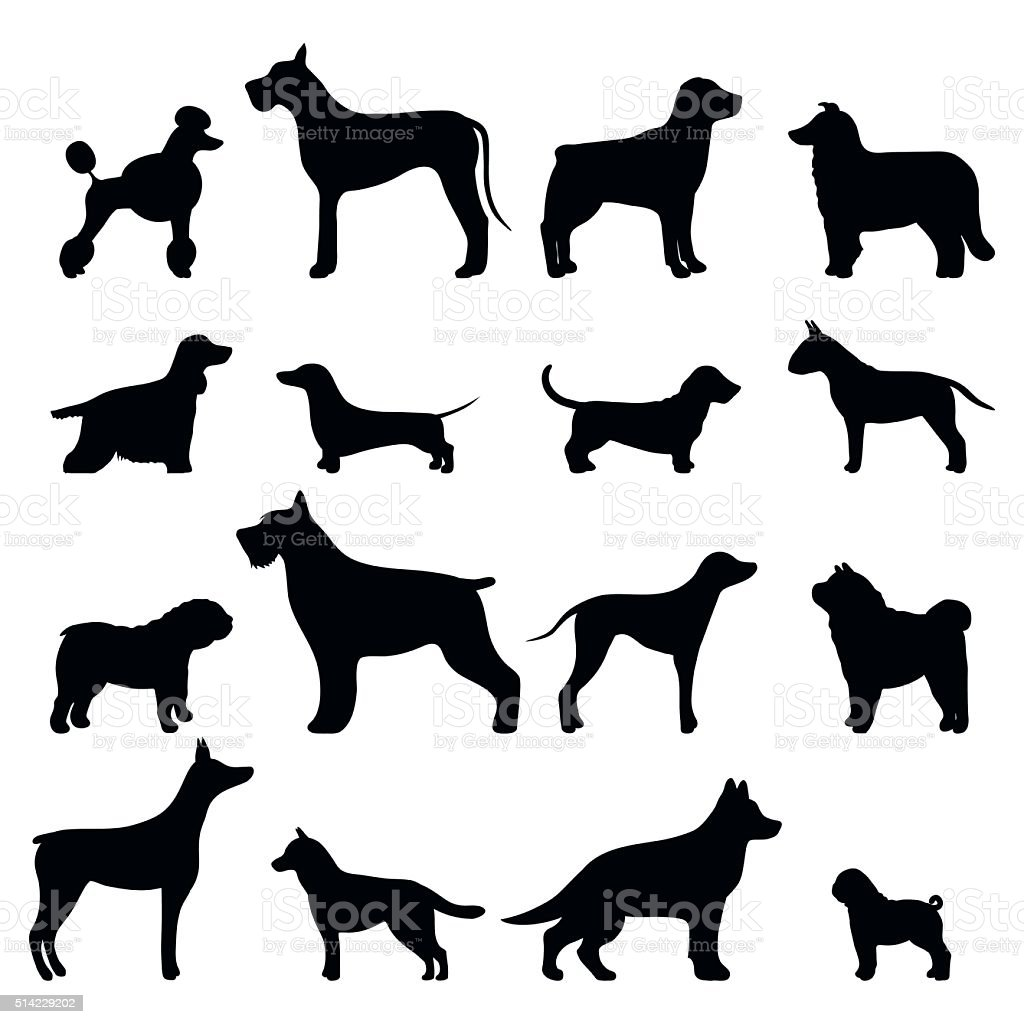 Dog breed vector black silhouette vector art illustration
