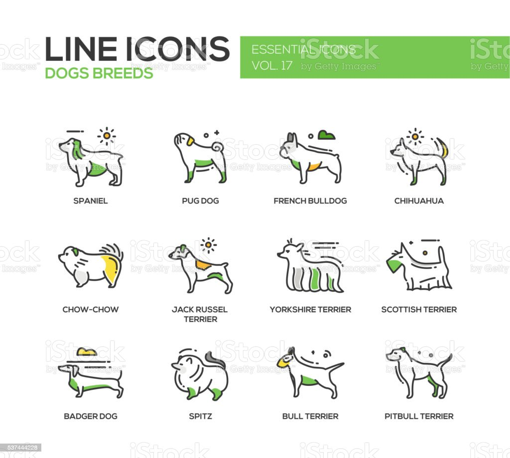 Dog breeds - line design icons set vector art illustration
