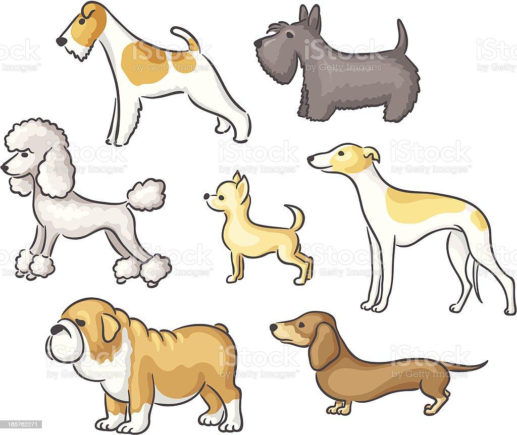 Dog breeds vector art illustration