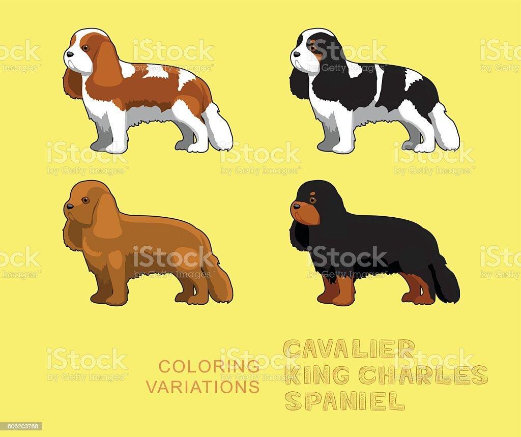 Dog Cavalier King Charles Spaniel Coloring Variations Vector Illustration vector art illustration