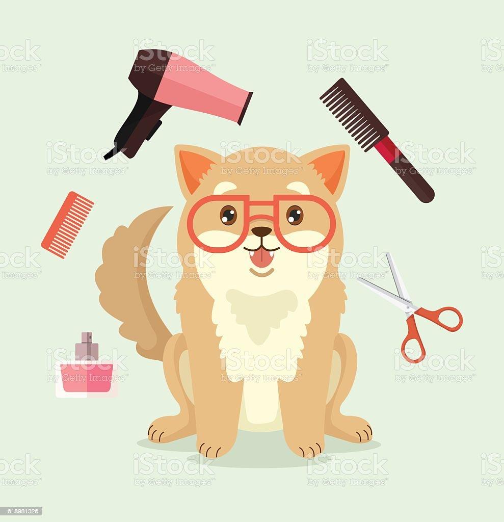 Dog grooming. Happy dog character. Vector flat cartoon illustration vector art illustration