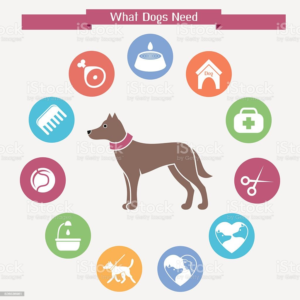 Dog infographics and icon set vector art illustration